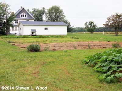 East Garden - September 10, 2014