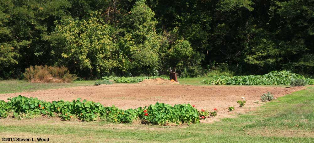East Garden fall tilled