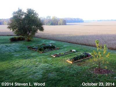 First Frost - October 23, 2014