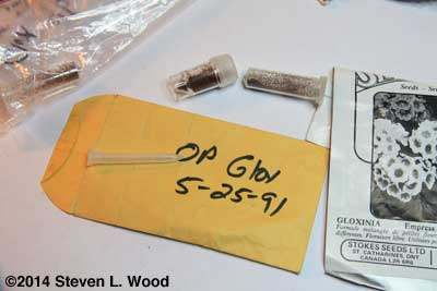 Gloxinia packets and vials