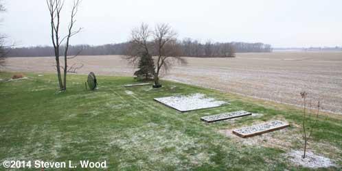 Back yard and garden plots