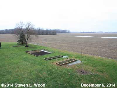 The Senior Garden - December 6, 2014