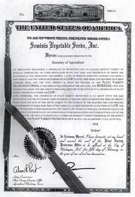 Seminis Eclipse PVP Certificate