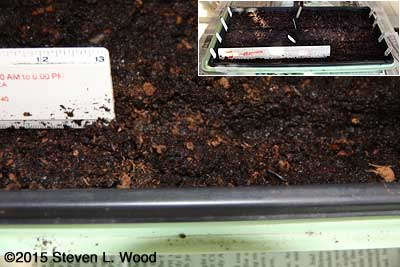Labeled furrows in tray