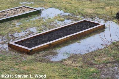 Standing water around raised bed