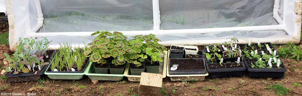 Almost full cold frame