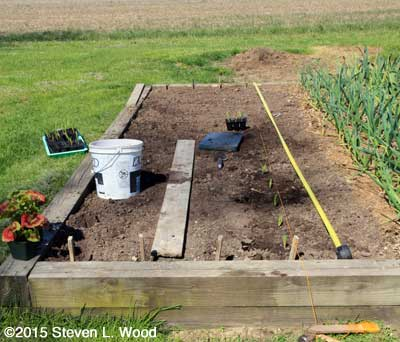 Planting the first row