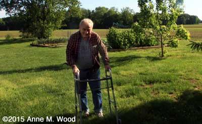 Steve Wood, a Senior Gardener