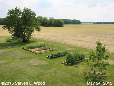 Our Senior Garden - May 24, 2015