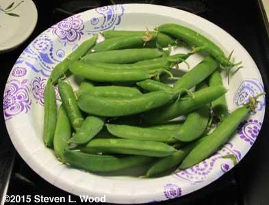 Small pea harvest