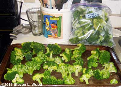 Broccoli frozen and some ready for freezing