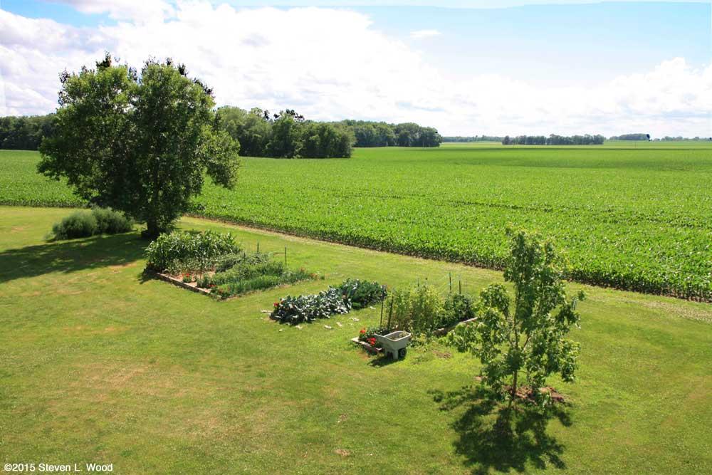 Our Senior Garden - June 15, 2015