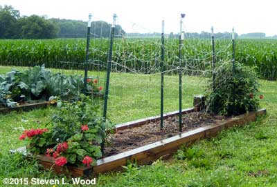 Cleared double trellis