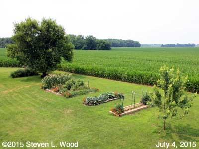 Our Senior Garden - July 4, 2015