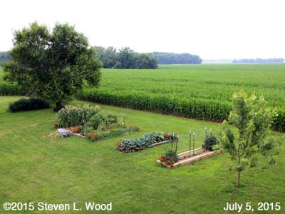 Our Senior Garden - July 5, 2015
