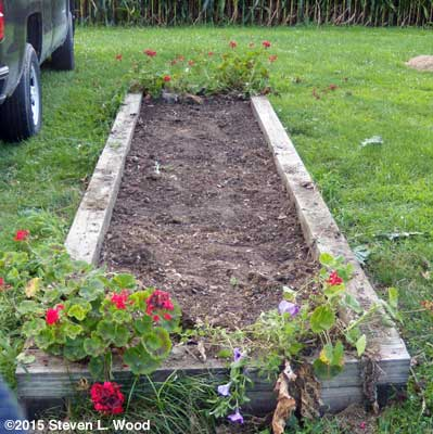 Cleared and replanted raised bed
