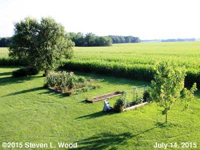 Our Senior Garden - July 14, 2015