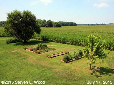 Our Senior Garden - July 17, 2015