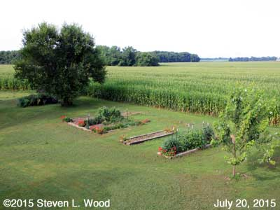 Our Senior Garden - July 20, 2015