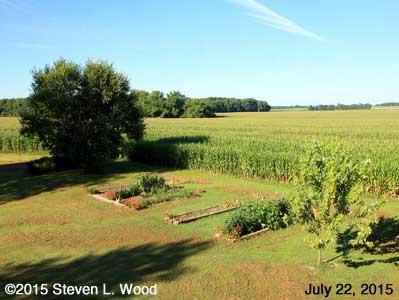 Our Senior Garden - July 22, 2015