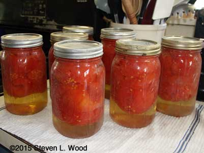 Seven quarts of whole tomatoes canned