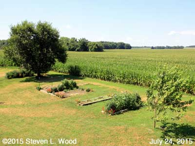 Our Senior Garden - July 24, 2015