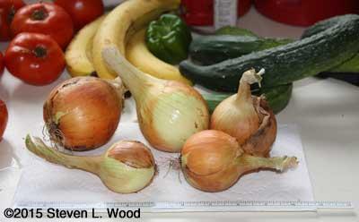Walla Walla onions and friends