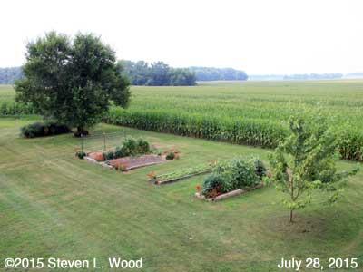 Our Senior Garden - July 28, 2015