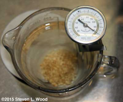 Hot Water Treating Seed