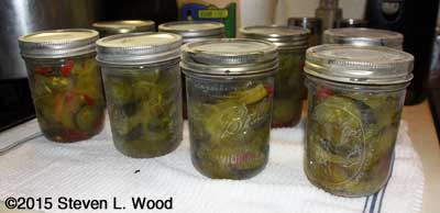 Eight pints of canned bread and butter pickles