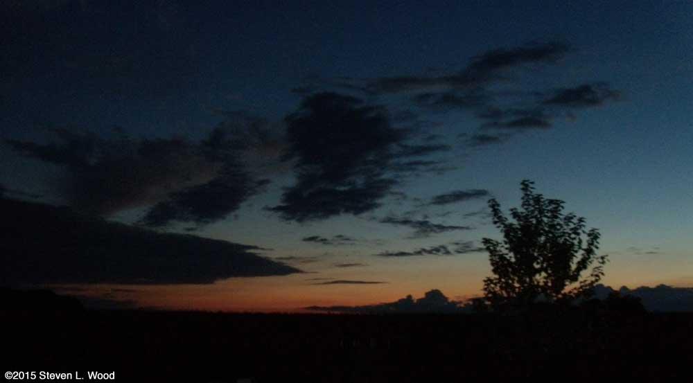 Night sky over our Senior Garden