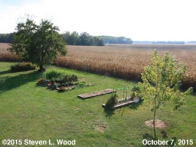 Our Senior Garden - October 7, 2015