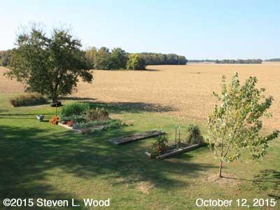 Our Senior Garden - October 12, 2015
