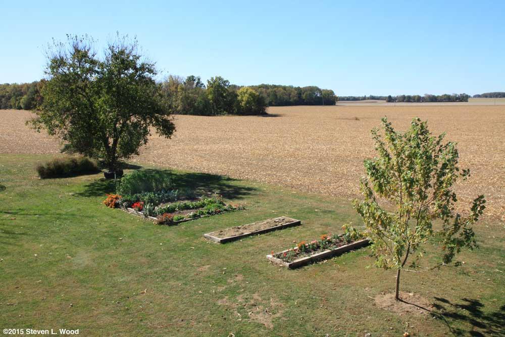 Our Senior Garden - October 16, 2015