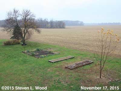 Our Senior Garden - November 17, 2015