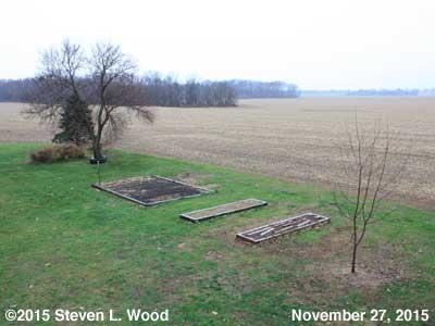 Our Senior Garden - November 27, 2015