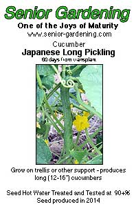 Japanese Long Pickling cucumber seed packet