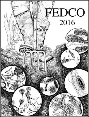 Fedco Seeds 2015 Catalog Cover