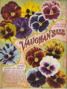 Vaughan Seed Store - 1899