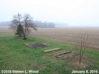 Our Senior Garden - January 8, 2016