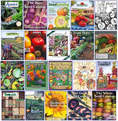 Seed Catalog Covers