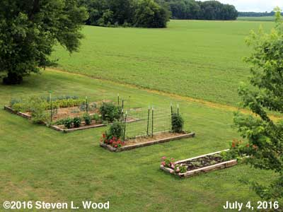 Our Senior Garden - July 4, 2016