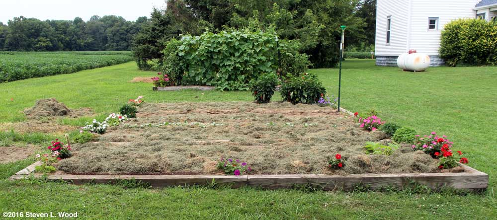 Raised bed mulched