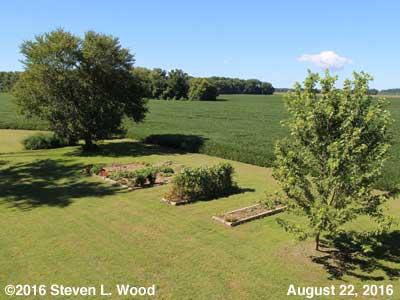 Our Senior Gardening - August 22, 2016