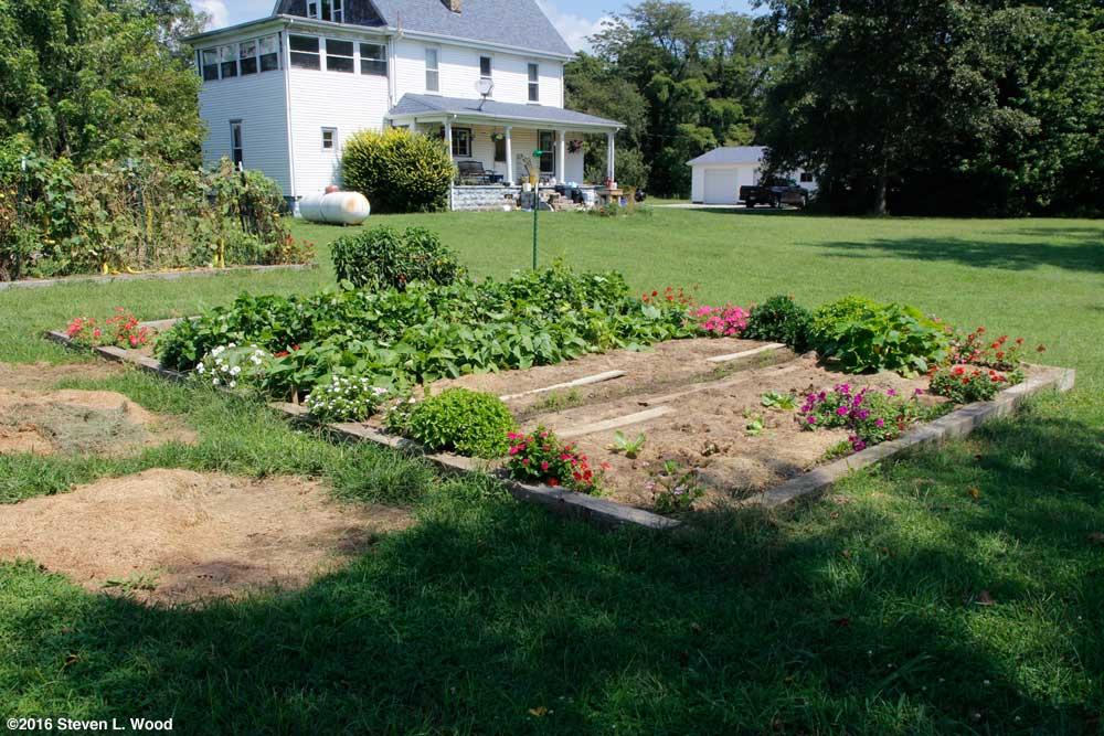 Flowers around main raised garden bed