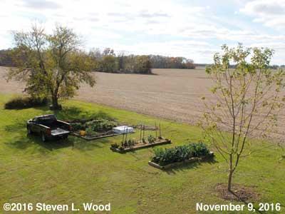 Our Senior Garden - November 9, 2016