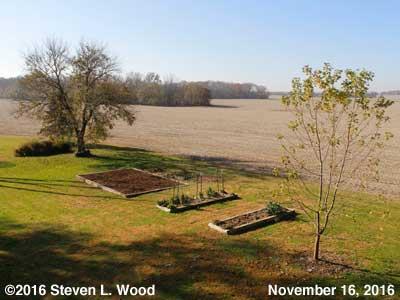 Our Senior Garden - November 16, 2016