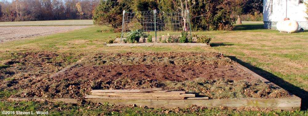 Main raised bed partially mulched for winter