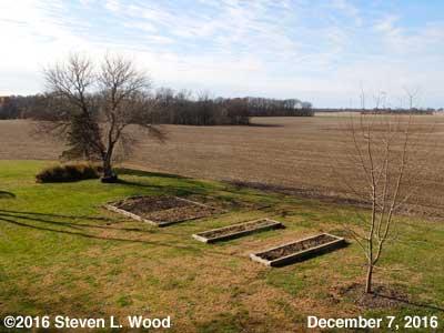 Our Senior Garden - December 7, 2016