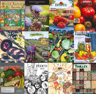 Seed Catalogs - 2016
